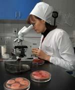 ЛСЭККВ (бактериолог. иссл-е)