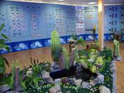 Музей воды в пгт. Краснопавловка
